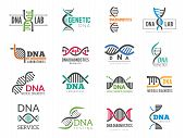 Dna Logotype. Business Identity With Science Biotech Symbols Pharmaceutical Bio Icons. Logo Dna Iden poster