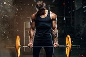 Handsome Strong Athletic Fitness Men Pumping Up Arm Muscles Workout Barbell Curl Fitness Concept Bac poster