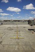 Empty Airplane Terminal Daytime