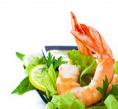 Picture of green salad with shrimps, Asian cuisine, fresh seafood platter, border isolated on white background, healthy eating concept, boiled prawn with vegetables, expensive delicates