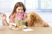 Little girl having lunch at table, smiling dog sitting by her side.