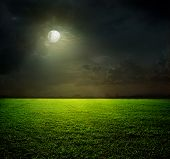 stock photo of moon silhouette  - Night and the moon on a green field - JPG