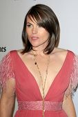 LOS ANGELES - OCT 22:  Clea Duvall arrives at  the 2012 Hollywood Film Festival Gala at Beverly Hilt