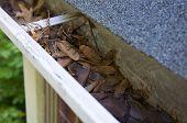 Cleanup Herbstblätter im Bundsteg
