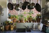 picture of saucepan  - Saucepans hanging over sink against potted plants on window sill in domestic kitchen - JPG