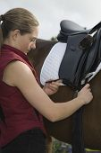 image of friendship belt  - Side view of a young woman tightening saddle on horse outdoors - JPG