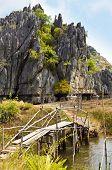 Rustic Bridge Over Stream, Vietnam