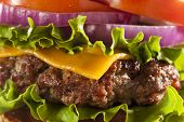 image of hamburger-steak  - Gourmet Cheese Burger on a Pretzel Roll with Lettuce and Tomato - JPG