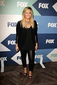 SLOS ANGELES - AUG 1:  Demi Lovato arrives at the Fox All-Star Summer 2013 TCA Party at the SoHo Hou
