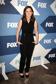 SLOS ANGELES - AUG 1:  Shannon Woodward arrives at the Fox All-Star Summer 2013 TCA Party at the SoH