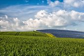 stock photo of solar battery  - Silicon solar energy panels on green corn field - JPG
