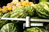 Watermelons On Sale
