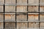 picture of truck farm  - Stack of wood produce boxes on a truck farm in Oregon - JPG