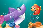 stock photo of piranha  - Illustration of a shark and a piranha under the sea  - JPG