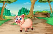 Illustration of a pig at the forest