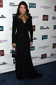 Lisa Vanderpump at the Real Housewives of Beverly Hills Season 4 Party and Vanderpump Rules Season 2