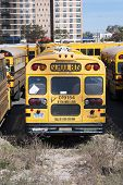 A New York City School Buses.