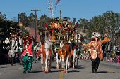 Wagon Horses In The 115Th Annual Golden Dragon Parade, Lunar New Year