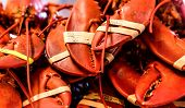 stock photo of crustacean  - Fresh Lobster claws at Fisherman - JPG
