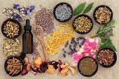Herbal naturopathic medicine selection also used in pagan witches magical potions over old paper bac