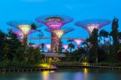 image of garden sculpture  - Gardens by the Bay  - JPG
