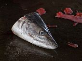 foto of discard  - A discarded fish head at a local outdoor fish market - JPG