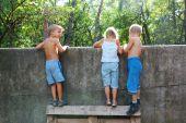 Nieuwsgierig kinderen spionage Over het hek