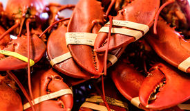 stock photo of claw  - Fresh Lobster claws at Fisherman - JPG