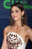 LOS ANGELES - JUL 17:  Lizzy Caplan at the CBS TCA July 2014 Party at the Pacific Design Center on July 17, 2014 in West Hollywood, CA