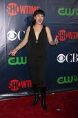 LOS ANGELES - JUL 17:  Pauley Perrette at the CBS TCA July 2014 Party at the Pacific Design Center on July 17, 2014 in West Hollywood, CA