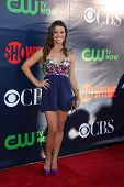 LOS ANGELES - JUL 17:  Melissa Claire Egan at the CBS TCA July 2014 Party at the Pacific Design Cent