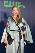 LOS ANGELES - JUL 17:  Elisabeth Harnois at the CBS TCA July 2014 Party at the Pacific Design Center