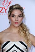 LOS ANGELES - JUL 19:  Allison Holker at the 4th Annual Celebration of Dance Gala at Dorothy Chandler Pavilion on July 19, 2014 in Los Angeles, CA