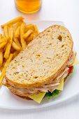 Healthy Turkey Breast, Cheese and Vegetables Sandwich on whole wheat bread
