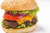 Delicious Hamburger on White Background