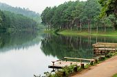 Pang Ung, Beautiful Forest Lake In The Morning
