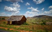 Traditional Malagasy house situated near the road in the field.