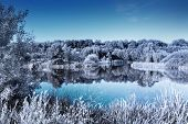 Clear lake in a forest. Infrared effect giving a cold, winter look