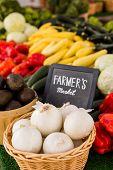 Fresh Produce Garlic