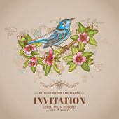 Spring Bird Illustration -Vintage Card - hand-drawn in vector