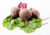 beets with leaves on a white background