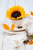 festive place setting for autumn holiday