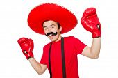 Funny mexican with boxer gloves isolated on the white