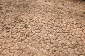 Dry cracked red soil