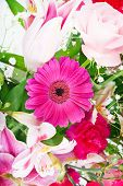 Flowers in a bouquet, pink gerber daisy in center.