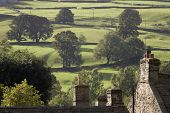 Roofs of houses and trees on fields in Yorkshire Dales, Yorkshire, England
