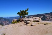 stock photo of granite dome  - Sentinel Dome in Yosemite National Park in California - JPG