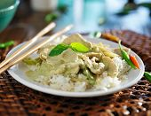 pic of curry chicken  - thai green curry with chicken on jasmine rice - JPG