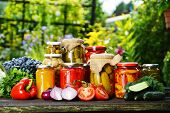 stock photo of pickled vegetables  - Jars of pickled vegetables in the garden. Marinated food.