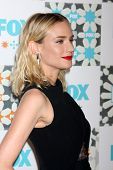 LOS ANGELES - JUL 20:  Diane Kruger at the FOX TCA July 2014 Party at the Soho House on July 20, 201